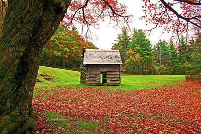 Photograph - Homeplace by Dale R Carlson