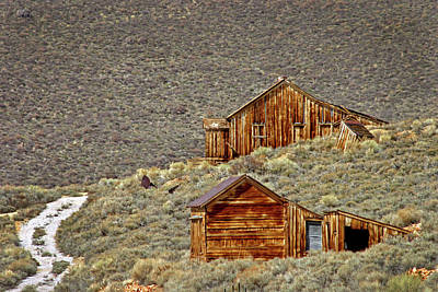 Photograph - Homes In Bodie by Inge Riis McDonald