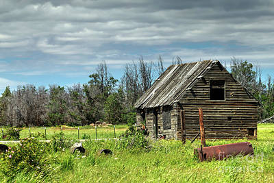 Photograph - Homestead Cabin by Rick Mann