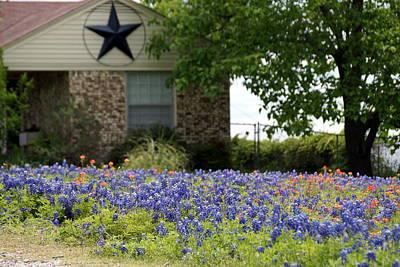 Photograph - Texas Homestead by Debi Demetrion