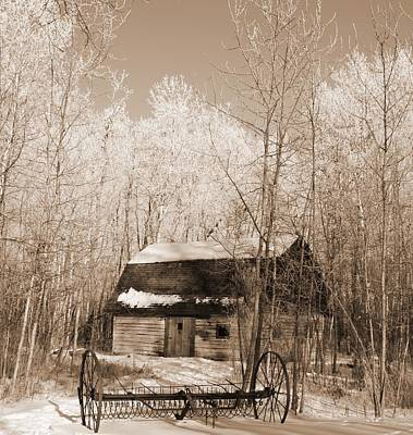 Art Print featuring the photograph Homestead by Pat Purdy