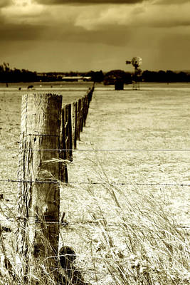 Barbed Wire Fences Photograph - Homeward Bound by Holly Kempe