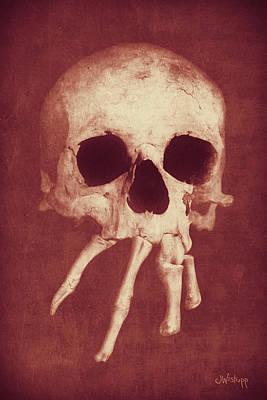 Photograph - Homo Spidercus Red by Joseph Westrupp