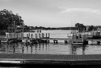Photograph - Homosassa  by Laurie Perry