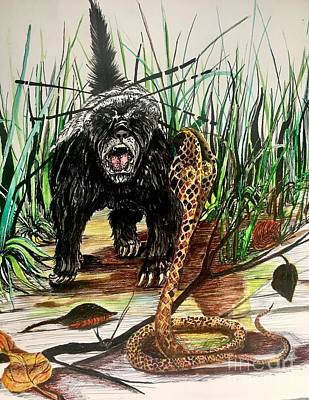 Cobra Mixed Media - Honey Badger by Amy Brown