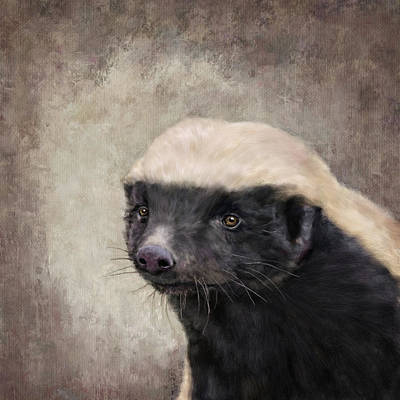 Honey Badger Art Print