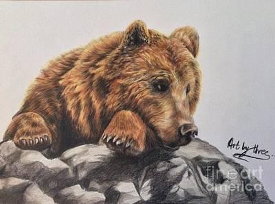 Drawing - Honey Bear by Art By Three Sarah Rebekah Rachel White