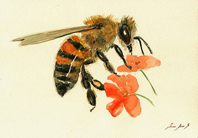 Honey Painting - Honey Bee Watercolor Painting by Juan  Bosco