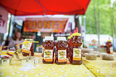 Photograph - Honey by David Arment