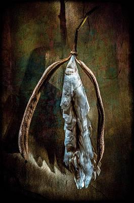 Photograph - Hong Kong Orchid Seed Pod 1 by Lou Novick