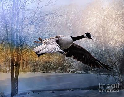 Canadian Geese Mixed Media - Honking Goose by Linda Troski