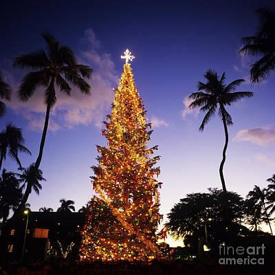 Honolulu Christmas Art Print by Kyle Rothenborg - Printscapes