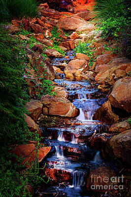 Photograph - Honor Heights Park Hidden Stream by Tamyra Ayles