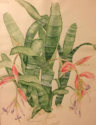 Painting - Honoring The Bromeliad by Randy Burns