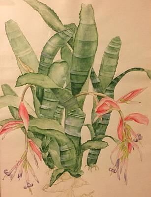 Painting - Honoring The Bromeliad by Randol Burns