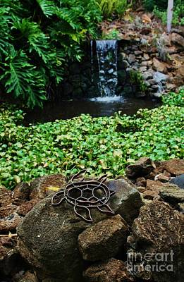 Photograph - Honu Pond by Craig Wood
