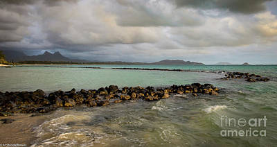Photograph - Honu Pond by Mitch Shindelbower
