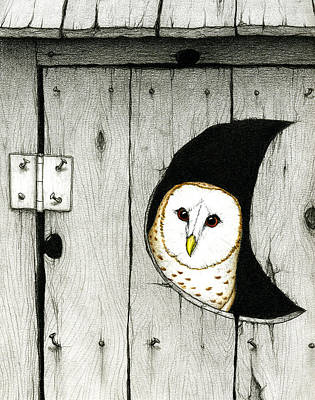 Barn Owl Drawing - Hoo Tooted by Don McMahon