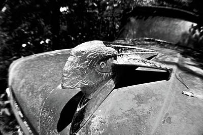 Hood Ornament Detail Art Print