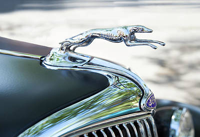 Photograph - Hood Ornament Ford by Theresa Tahara