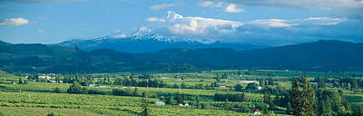 Hood River Valley And Mount Hood, Oregon Art Print by Panoramic Images