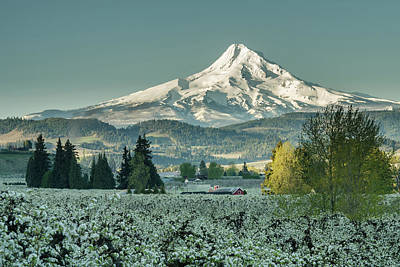 Photograph - Hood River Valley In Spring by Don Schwartz