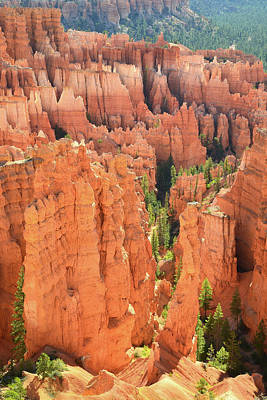 Photograph - Hoodoo Valley by Ray Mathis