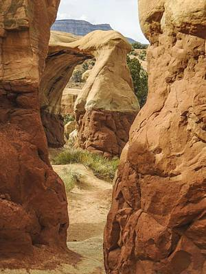 Photograph - Hoodoos And A Natural Arch Devil's Garden by NaturesPix