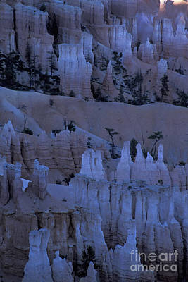 Photograph - Hoodoos Before Dawn by Stan and Anne Foster