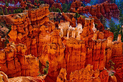 Photograph - Hoodoos Bryce Canyon by James BO  Insogna