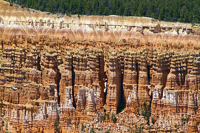 Photograph - Hoodoos Bryce Canyon by Waterdancer