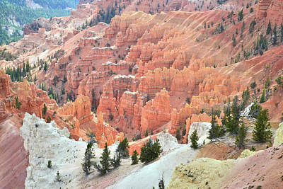 Photograph - Hoodoos Galore by Ray Mathis