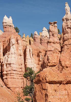 Photograph - Hoodoos by Juli Scalzi