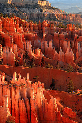 Photograph - Hoodoos Of Sunset Point At Sunrise  In Bryce Canyon by Pierre Leclerc Photography