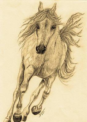 Rodeo Art Drawing - Hoof Beats Sepia by Teresa Vecere