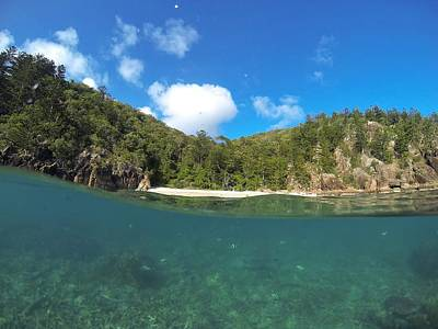 Photograph - Hook Island, Whitsundays by Keiran Lusk
