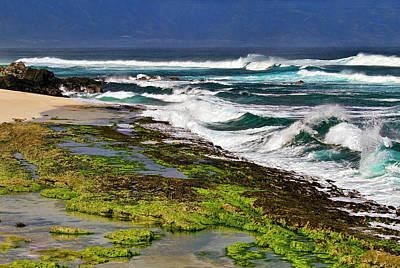 Outlook Photograph - Ho'okipa Beach by Marcia Colelli