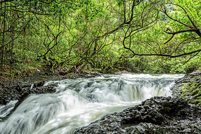 Photograph - Ho'olawa Stream by Kelley King