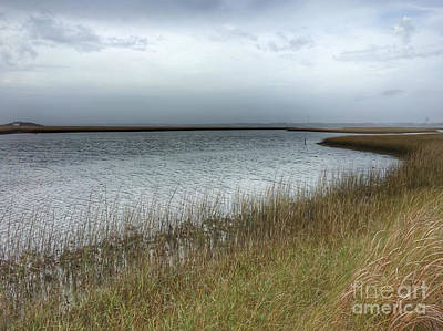 Photograph - Hoop Pole Creek Estuary by Kerri Farley