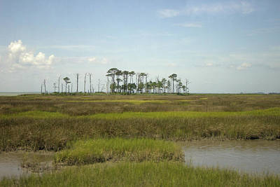 Photograph - Hooper Island Marsh Land by Chris W Photography AKA Christian Wilson