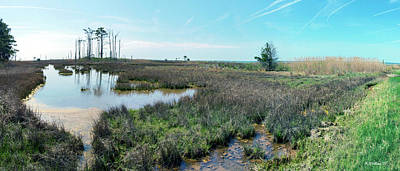 Photograph - Hooper's Island Wetlands by Brian Wallace