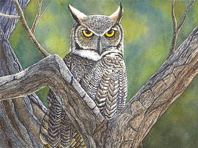 Hooter Art Print by Catherine G McElroy