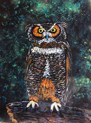 Painting - Hooty Owl by Anne Sands
