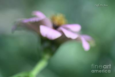 Photograph - Hope by Cathy Dee Janes