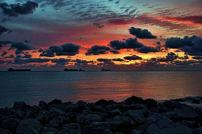 Photograph - Hope by Diana Mary Sharpton