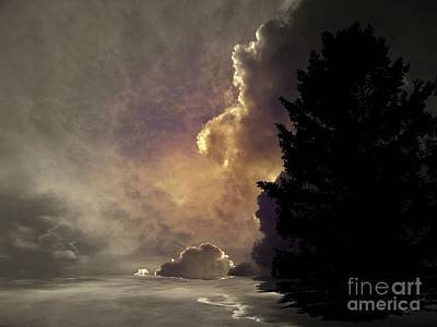 Photograph - Hope by Elfriede Fulda