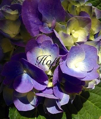 Photograph - Hope-flowers by Alohi Fujimoto
