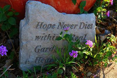 Photograph - Hope Never Dies by Kathryn Meyer