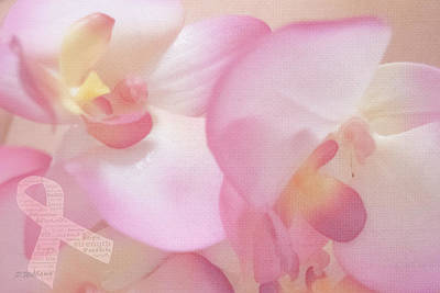 Photograph - Hope Orchid by Pamela Williams