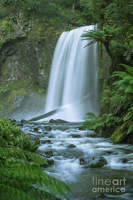 Photograph - Hopetoun Falls by Howard Ferrier